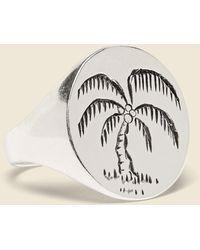 LHN Jewelry Palm Tree Signet Ring - Metallic