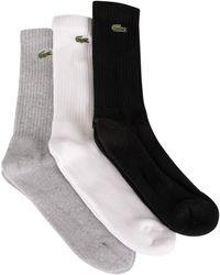 Lacoste 3 Pack Sport Socks - Grey