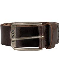 Levi's Alturas Leather Belt - Brown