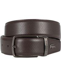 Lacoste - Men's Reversible Punched Leather Belt, Brown Men's Belt In Brown - Lyst
