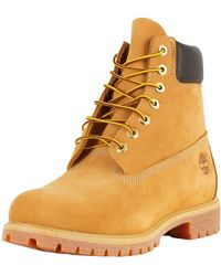 Timberland 10061 Classic 6 Inch Premium Waterproof Boots - Multicolour