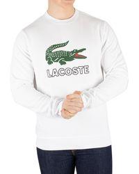 Lacoste Graphic Sweatshirt - White