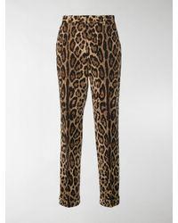 Dolce & Gabbana Leopard Print Pants - Brown