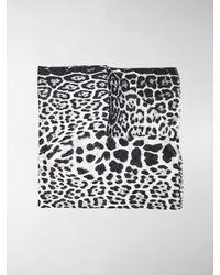 Saint Laurent Leopard-print Silk Scarf - Black