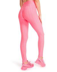 Steve Madden Maximize Scrunched LEGGING Pink