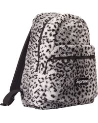 bb28bd58f4ba Lyst - Dolce   Gabbana Sicily Small Leopard-print Coated Canvas ...