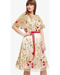 Studio 8 - Richmond Embroidered Dress - Lyst