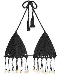 Anna Kosturova - Crochet Knit Bikini Top With Shell Embellishments - Lyst
