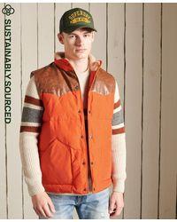 Superdry Mountain Bodywarmer Van Leermix - Oranje
