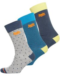 Superdry - City Sock Triple Packs - Lyst
