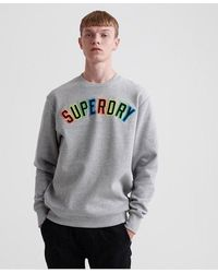 Superdry New House Rules Applique - Grey