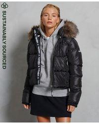 Superdry Doudoune courte en peau lainée Sport - Noir