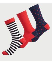Superdry Pack de tres pares de calcetines Novelty de algodón orgánico - Multicolor