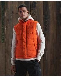 Superdry Chaleco Everest - Naranja