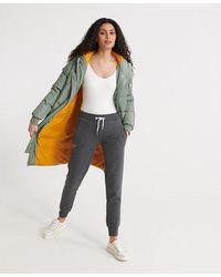 Superdry Orange Label Jogger - Grey