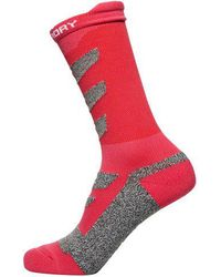 Superdry - High Ergonomic Sock Single Pack - Lyst