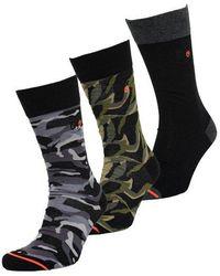 Superdry Pack de tres pares de calcetines City - Gris