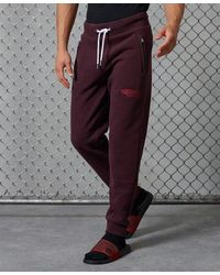 Superdry Core Logo Athletics Joggers - Red