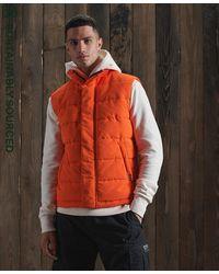 Superdry Everest Bodywarmer - Oranje