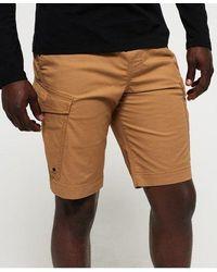 Superdry World Wide Cargo Shorts - Metallic