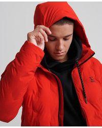 Superdry Echo Quilted Puffer Jacket - Orange