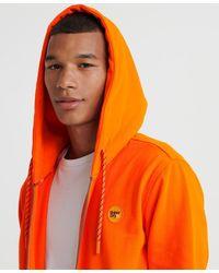 Superdry Collective Zip Hoodie - Orange
