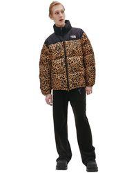 Vetements Леопардовый Стеганый Пуховик - Многоцветный