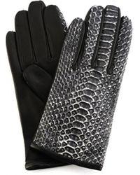 Haider Ackermann Перчатки Из Кожи Питона - Черный