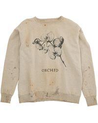 Saint Michael Orchid Printed Sweatshirt - Natural