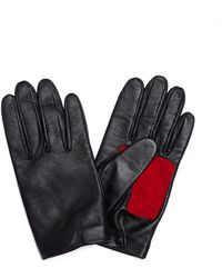 Yohji Yamamoto Leather & Suede Gloves - Black
