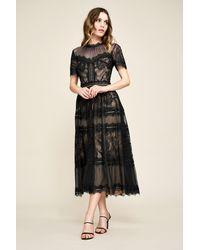 Tadashi Shoji Camilla Tea-length Dress - Petite - Black