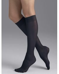 Talbots Plus Size Knee Highs - Gray