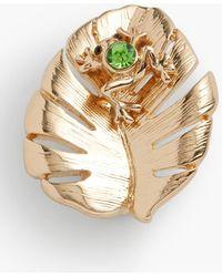 Talbots Tree Frog & Palm Brooch - Metallic
