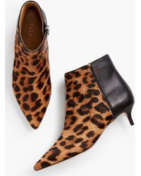 Talbots Iona Kitten Heel Ankle Boots-haircalf - Brown