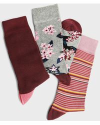 Ted Baker Box Of Three Printed Socks - Rot