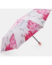 Ted Baker - Babylon Compact Umbrella - Lyst