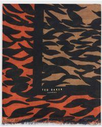 Ted Baker Pañuelo Grande Estampado Persimmon - Marrón