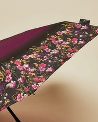 Ted Baker Fern Forest Umbrella - Multicolour