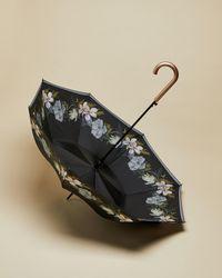 Ted Baker Opal Umbrella - Black