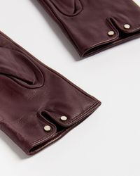 Ted Baker Leather Bow Detail Gloves - Purple