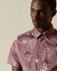 Ted Baker Camisa De Algodón Estampado Tropical - Morado