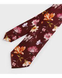 Ted Baker Corbata Estampado Flores - Rojo