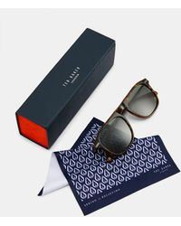Ted Baker Square Sunglasses - Brown