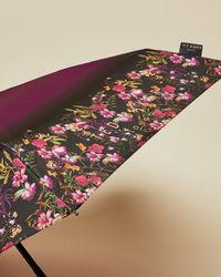 Ted Baker Fern Forest Umbrella - Multicolour