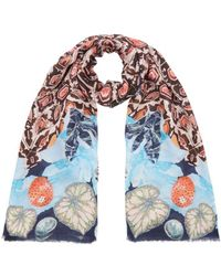 Temperley London - Spiral Printed Scarf - Lyst