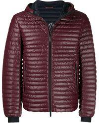 Emporio Armani Down Jacket - Multicolour