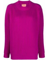 ANDAMANE Wool Crewneck Sweater - Pink