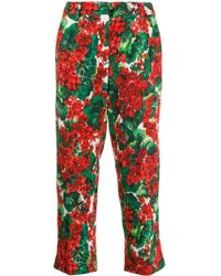 Dolce & Gabbana Floral Cropped Pants - Red