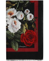Dolce & Gabbana Floral-print Scarf - Black