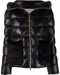 Herno Short Down Jacket - Black